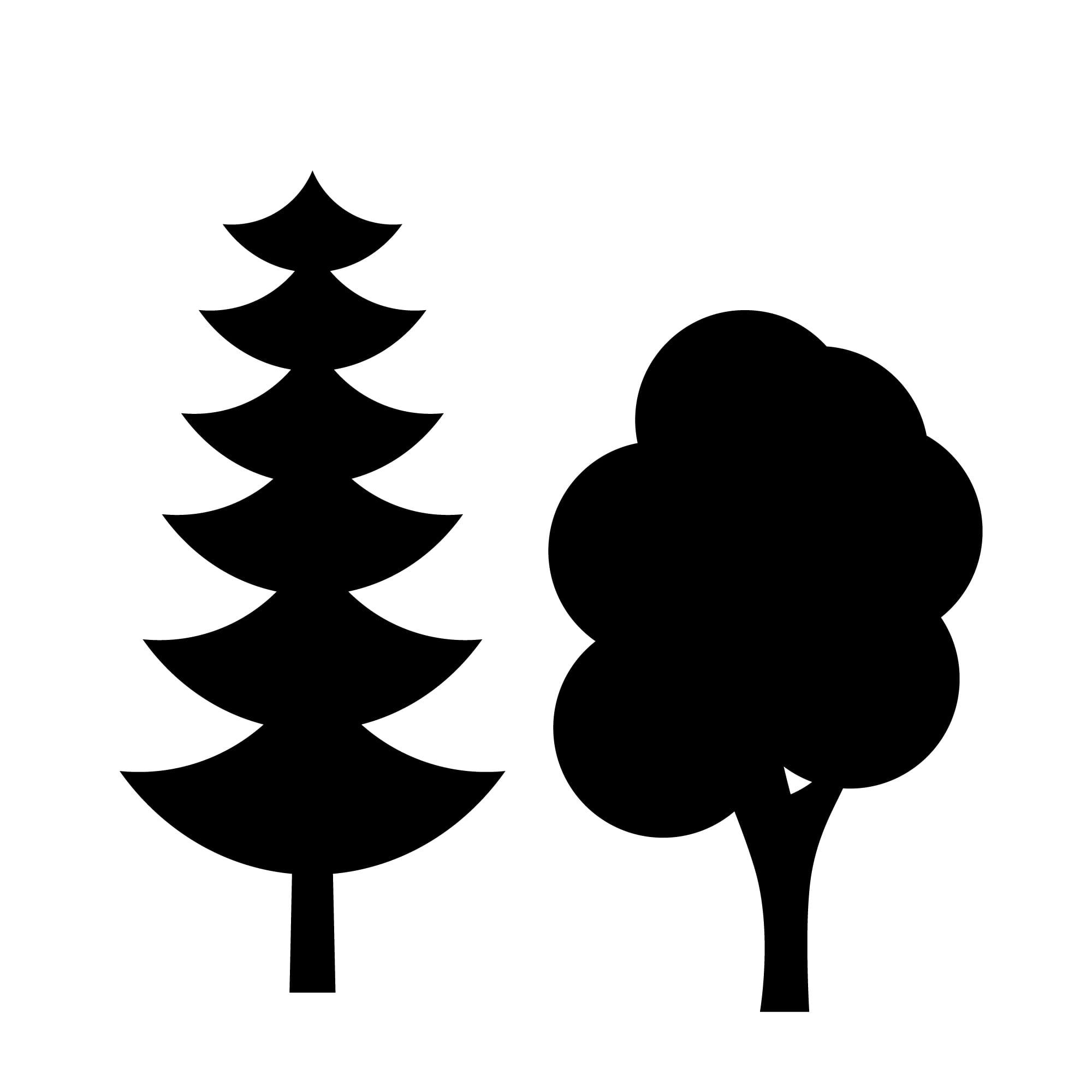 trees biomass